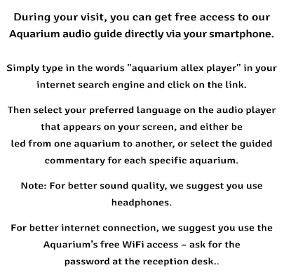 Aquarium Allex Player